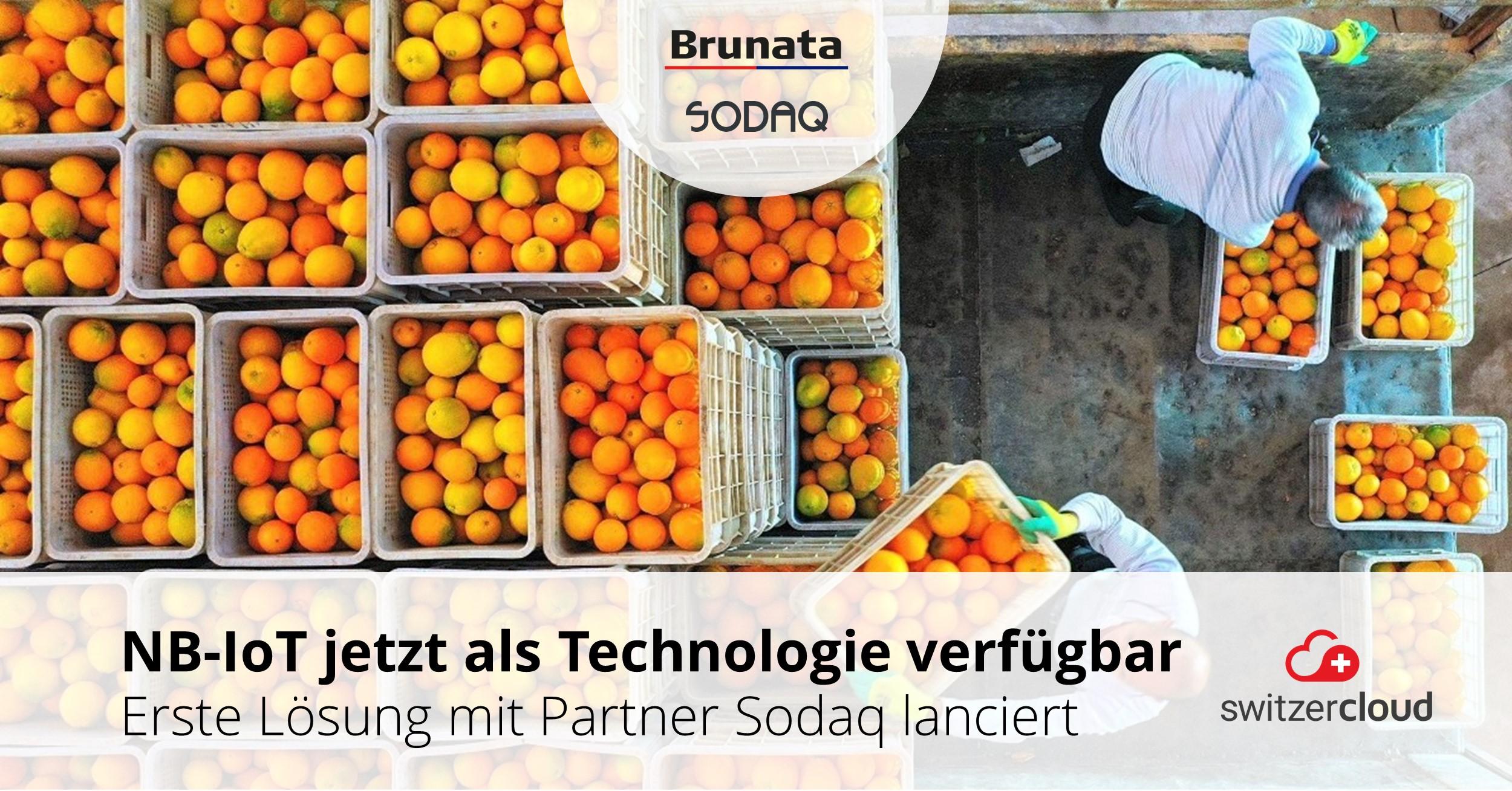 SODAQ und Brunata bieten europaweites Tracking auf der Switzercloud